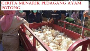 Cerita Menarik Pedagang Ayam Potong